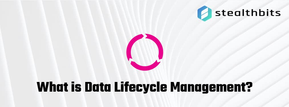What is Data Lifecycle Management?