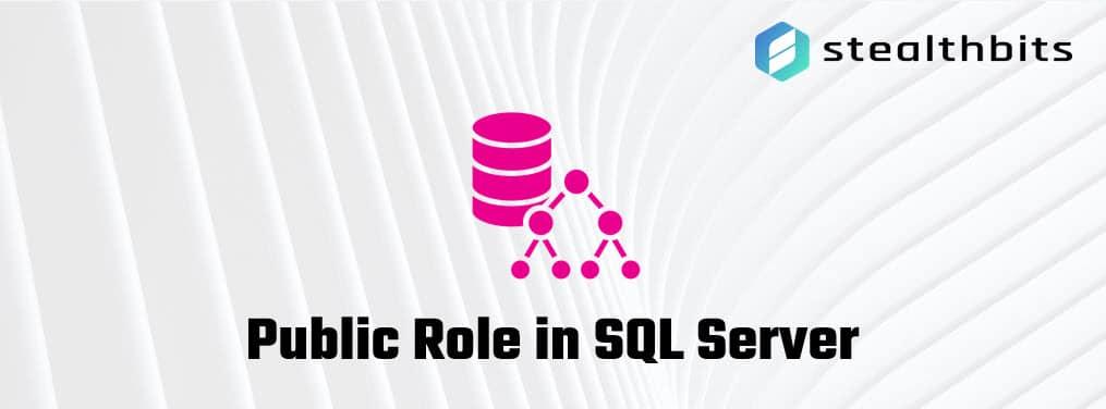 Public Role in SQL Server